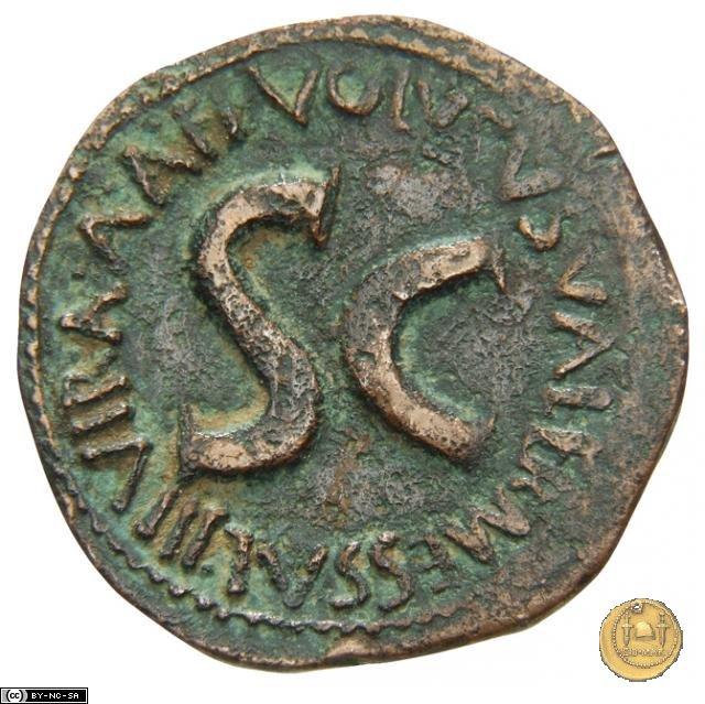 CLM560 6BC (Roma)