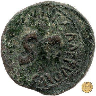 CLM562 6BC (Roma)