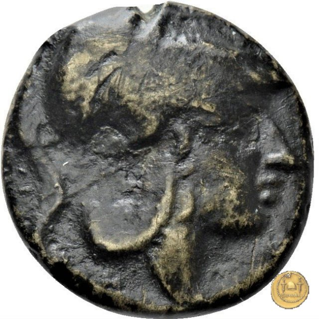 17/1 260BC (Roma)