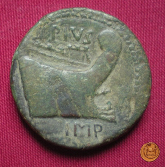 479/1 - asse Sex. Pompeius Magnus Pius 45a.C. (Sicilia)