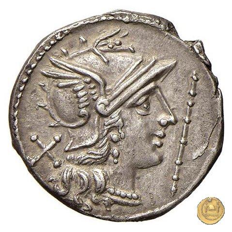112/2 - bastone (staff) 206-195BC (Roma)
