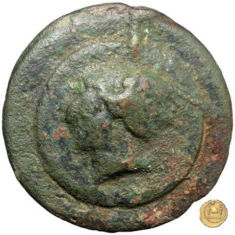 14/1 280-276a.C. (Roma)
