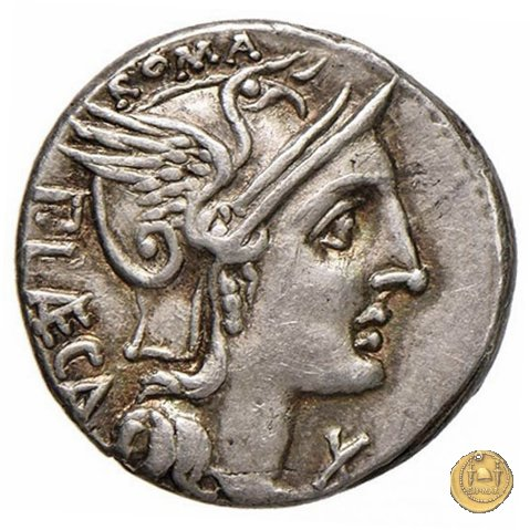 301/1 - denario P. Porcius Laeca 110-109BC (Roma)