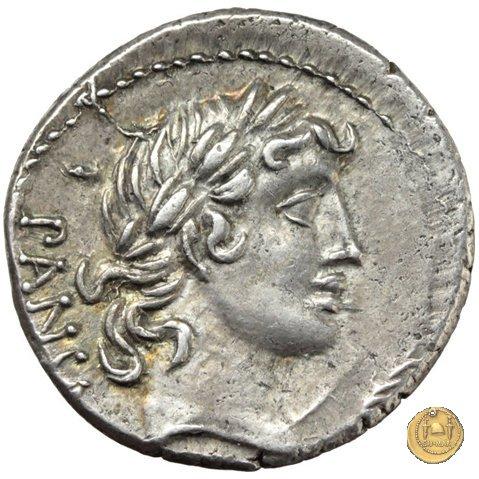 342/3 - denario C. Vibius C.f. Pansa 90a.C. (Roma)