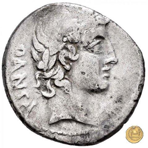 342/4 - denario C. Vibius C.f. Pansa 90BC (Roma)