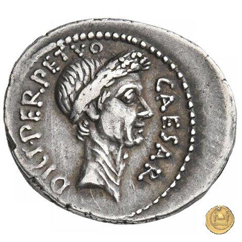 480/11 - denario C. Iulius Caesar / P. Sepullius Macer 44a.C. (Roma)