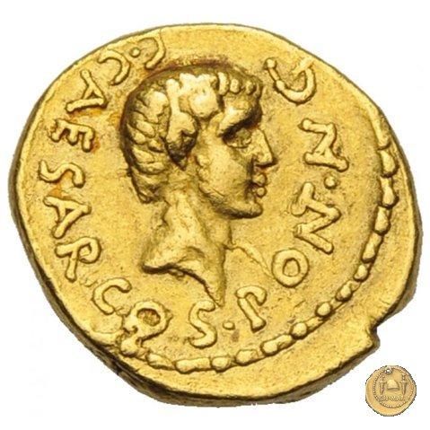 490/2 - aureo C. Iulius Caesar Octavianus 43a.C. (Gallia Cisalpina e Italia)