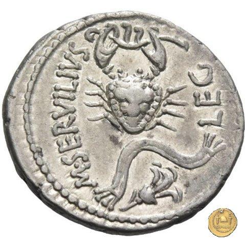 505/3 - denario C. Cassius Longinus / M. Servilius C.f. 43-42BC (Itinerante con Cassius)