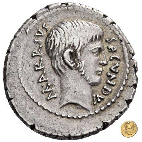 513/2 - denario M. Arrius Secundus 41a.C. (Roma)