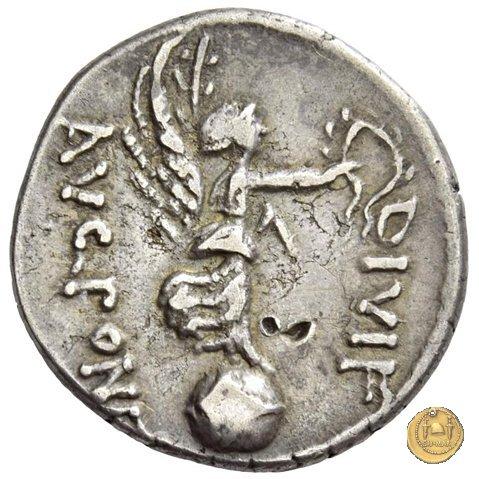 546/6 - denario C. Iulius Caesar Octavianus / L. Pinarius Scarpus 31a.C. (Cirenaica)