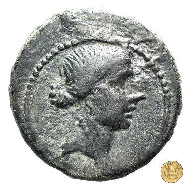 550/1 - bronzo Q. Oppius 88BC (Laodiceia)
