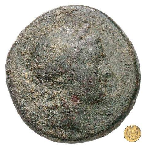 550/2 - bronzo Q. Oppius 88BC (Laodiceia)
