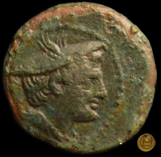 43/6 214-212BC (Luceria)