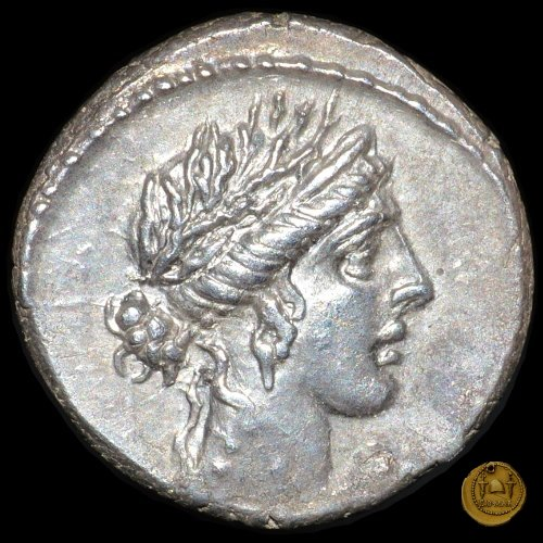 448/1 - denario L. Hostilius Saserna 48BC (Roma)